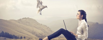 پرنده کنجکاو