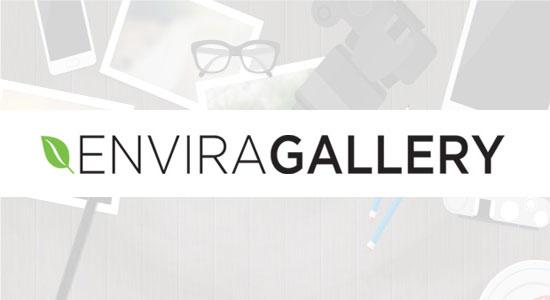 افرونه envira gallery نسخه premuim