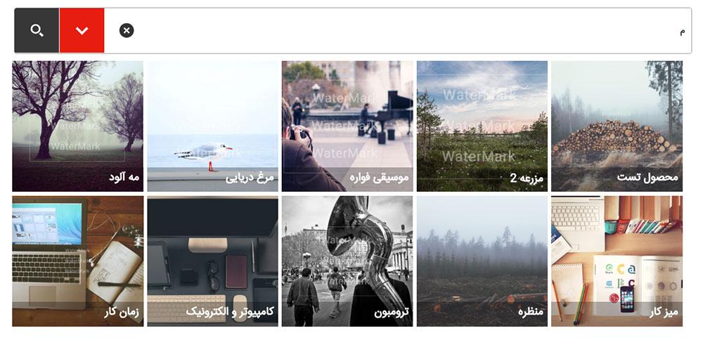 نمایش ایزوتوپیک در افزونه ajax search pro فارسی